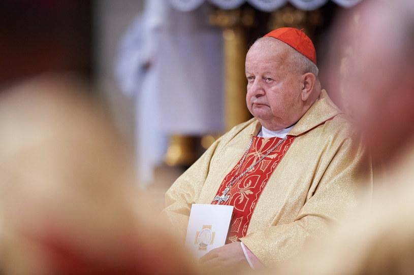 Kardynał Stanisław Dziwisz /Łukasz Szeląg /Reporter