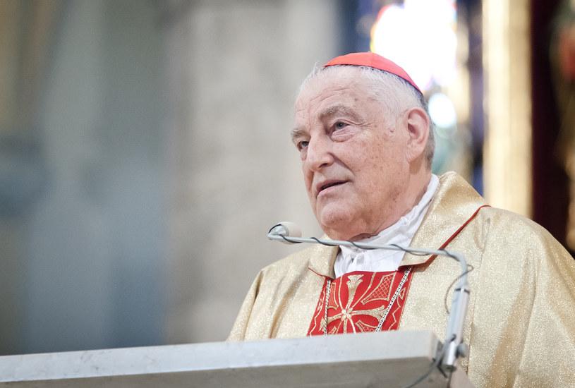 Kardynał Zenon Grocholewski /Michał Tuliński /Agencja FORUM