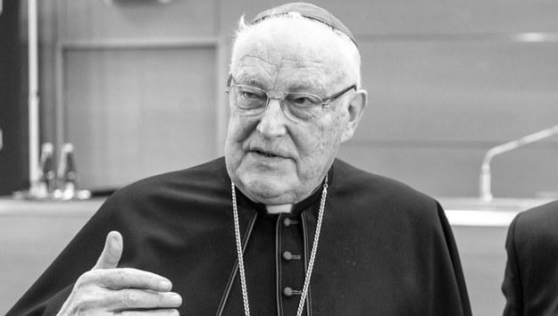 Kardynał Zenon Grocholewski /\Tytus Żmijewski