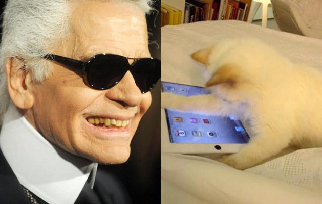 """Karl Lagerfeld ze swoją """"narzeczoną"""" /Splashnews"""