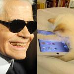 Karl Lagerfeld żeni się ze swoją... kotką