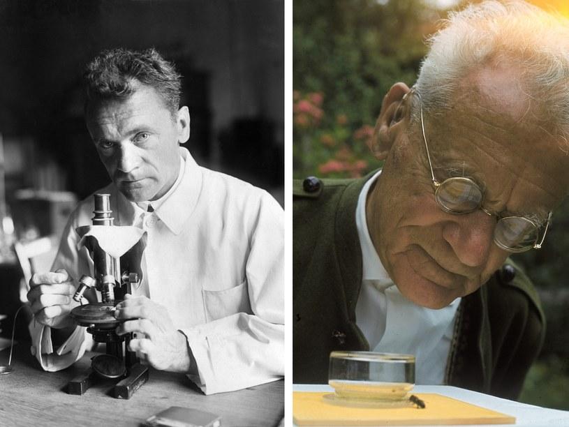 Karl von Frisch, laureat Nagrody Nobla, na zdjęciach z 1942 i 1964 roku /Getty Images