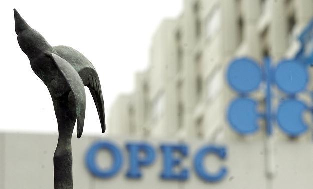 Kartel OPEC obecnie zarabia krocie /AFP