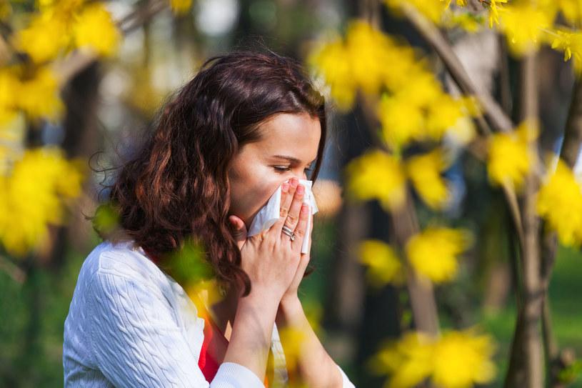 Katar sienny wywołują pyłki roślin i zarodniki grzybów /123RF/PICSEL