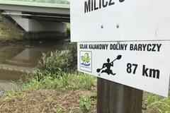 Katastrofa ekologiczna na rzece Barycz. Sytuacja wciąż jest trudna