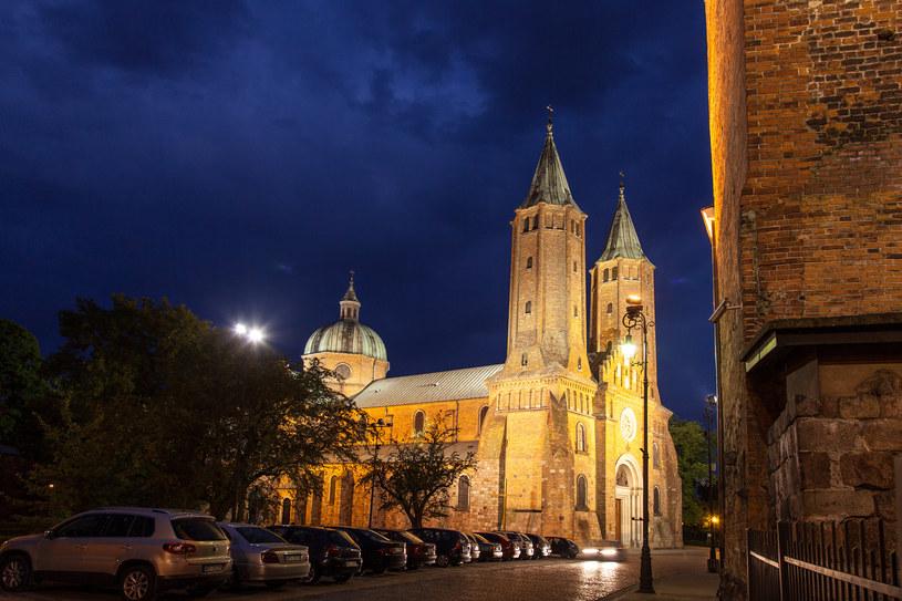 Katedra w Płocku /Fot. Wojciech Wojcik  /Agencja FORUM