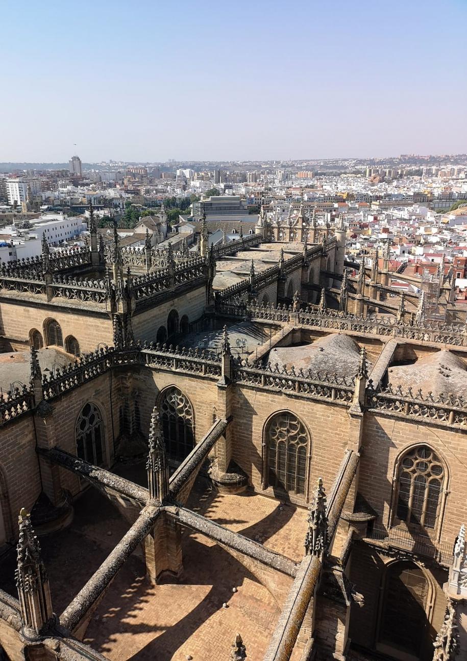 Katedrę Najświętszej Marii Panny można zwiedzać także z perspektywy dachu /Patryk Serwanski /RMF FM