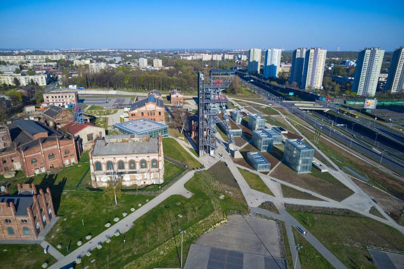 Katowice na wnioski mieszkańców posadzą ponad 300 drzew /Krystyna i Aleksander Rabij /Reporter