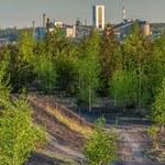 Katowice. Okrągły stół o transformacji regionów górniczych