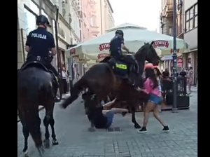 Katowice: Policyjny koń omal nie staranował mężczyzny. Interwencję nagrano
