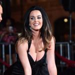 Katy Perry trafiła do aresztu za nagość w miejscu publicznym. O co chodzi?