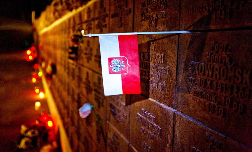 Katyń: MIejsce kaźni polskich oficerów zamordowanych przez Sowietów /MAXIM MALINOVSKY  /AFP