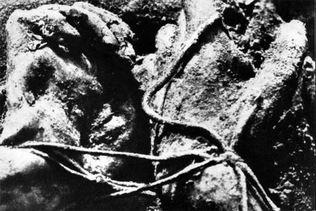 Katyń - miejsce sowieckiej zbrodni na polskich oficerach. Ręce ofiary związane sznurem /Laski Diffusion /East News