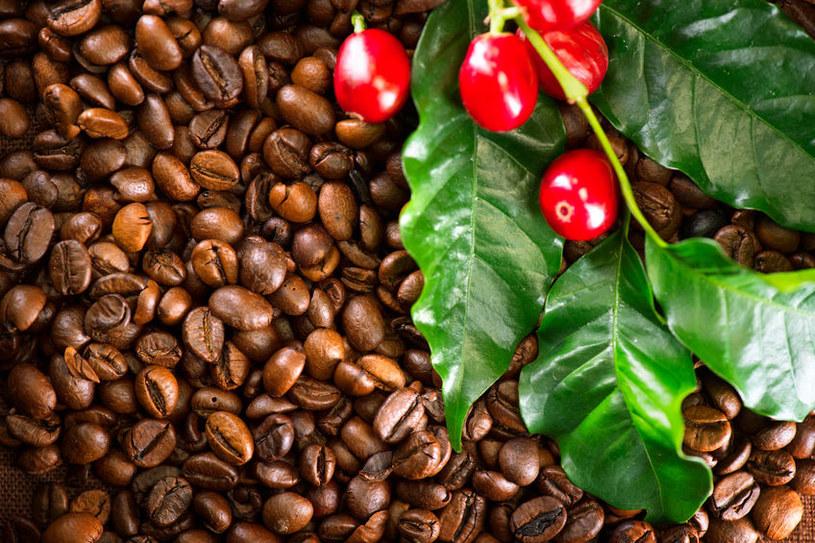 Kawa jako źródło kofeiny /©123RF/PICSEL