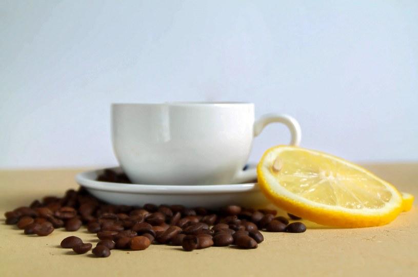 kawa z cytryną /© Photogenica