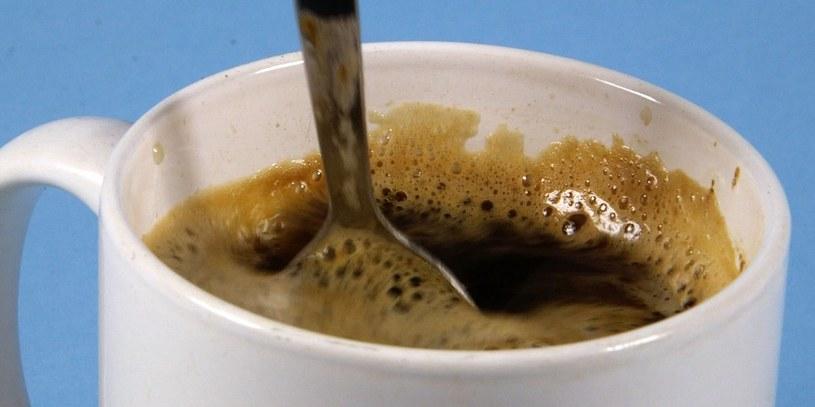 kawa z grzybami /© Photogenica