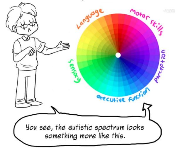 Każda osoba w spektrum autyzmu może funkcjonować w tych różnych obszarach, na różnym poziomie. Zdj. ilustracyjne /sailsgroup.org /