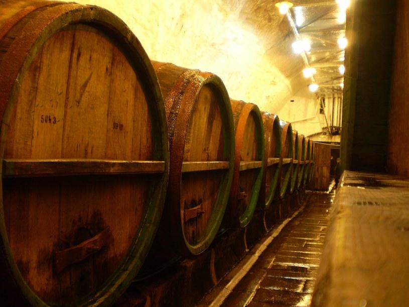 Każda z tych beczek zawiera dokładnie 38 hektolitrów świeżego, zimnego piwa... /Rafał Walerowski /INTERIA.PL