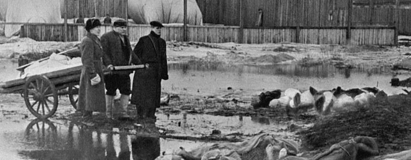 Każdego dnia w wyniku niemieckich represji umierały tysiące ludzi /RIA Novosti archive/Borys Kudojarow /CC-BY-SA 3.0 /domena publiczna