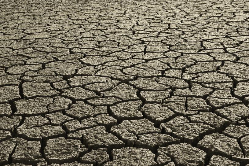Każdego roku około 12 mln ha gleb ulega degradacji /© Glowimages