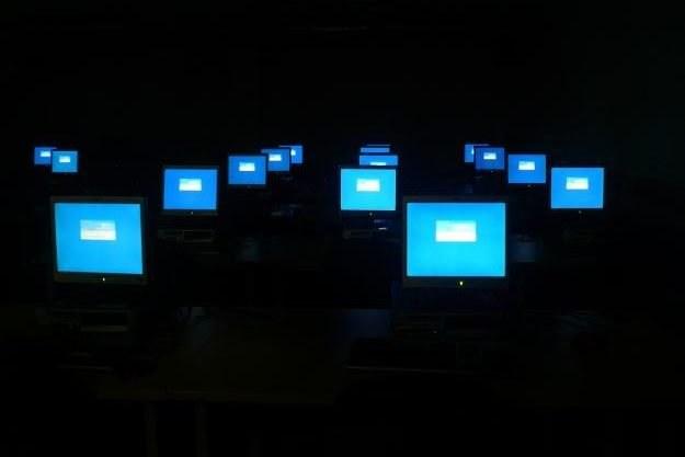 """Każdy komputer z """"kartą szczepień""""    fot. Jenny Rollo /kopalniawiedzy.pl"""
