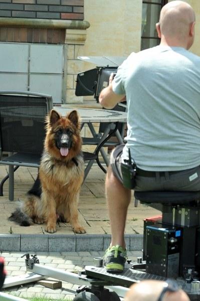 W nowym sezonie sceny z Aleksem kręcone są kamerą przeznaczoną specjalnie dla niego