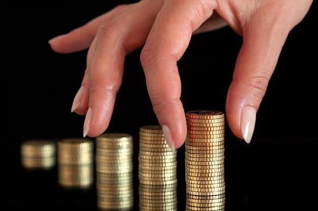 KE chce zmienić swoje wydatki i głębiej sięgnąć do kasy państw członkowskich UE /© Panthermedia