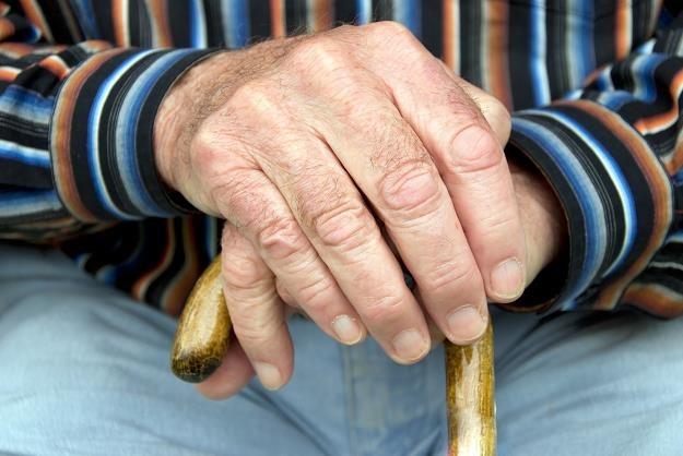 KE zaleca Polsce podwyższenie wieku emerytalnego /©123RF/PICSEL