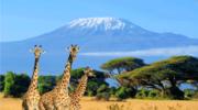Kenia. Egzotyczny kraj, który warto odwiedzić