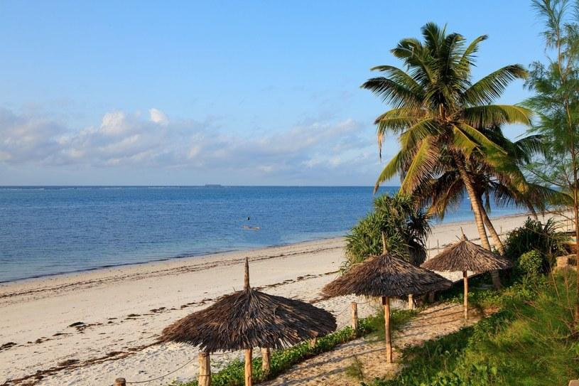 Kenijskie plaże cieszą się coraz wiekszą popularnością wśród Polaków /123RF/PICSEL