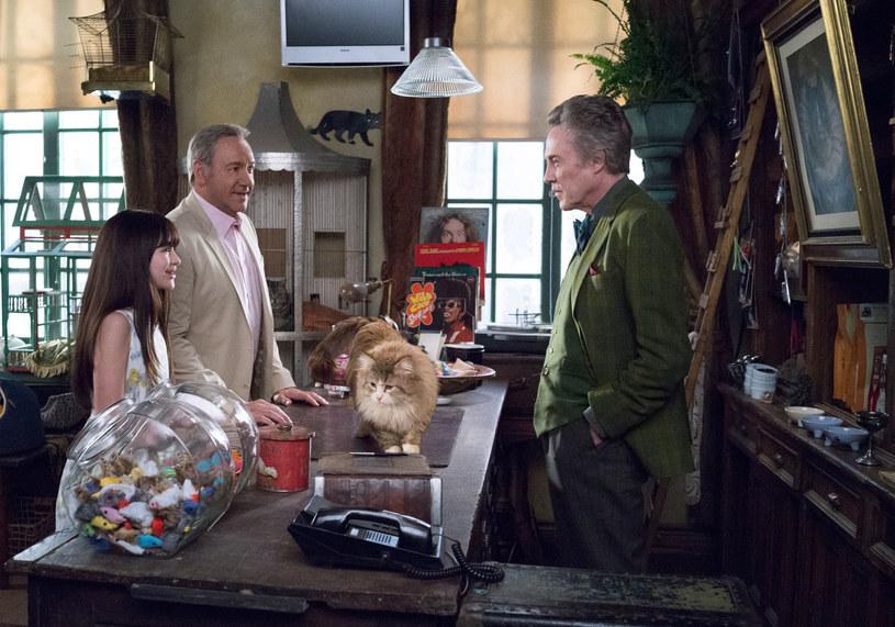 Kevin Spacey kupuje kota od Christophera Walkena /materiały prasowe