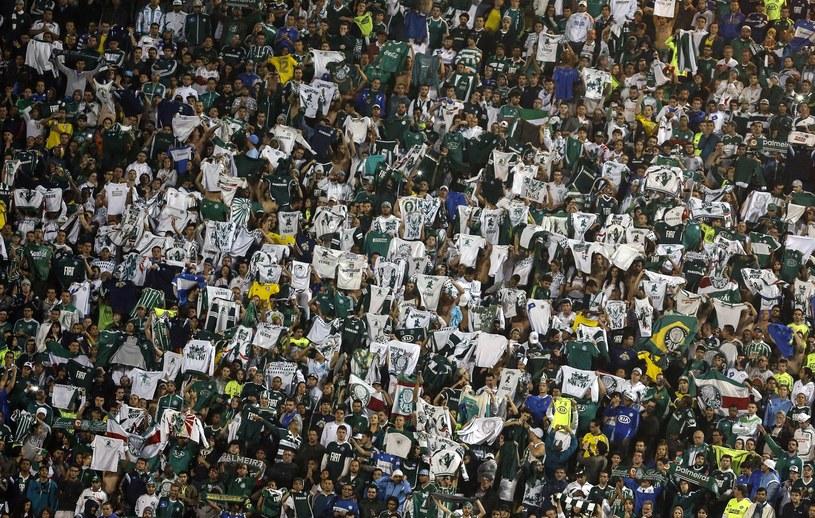 Kibice Palmeiras Sao Paulo mogą odetchnąć z ulgą /AFP