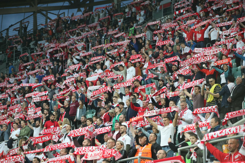 Kibice reprezentacji Polski w trakcie meczu z Rosją /fot. Andrzej Iwanczuk/REPORTER /East News