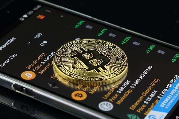 Kiedy kupować bitcoiny? Amerykańscy naukowcy to wiedzą /©123RF/PICSEL