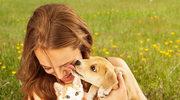 Kiedy odrobaczać zwierzęta? Weterynarz radzi