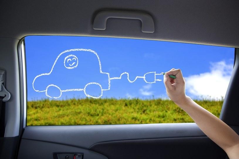Kiedy pojedziemy polskim samochodem elektrycznym? /123RF/PICSEL