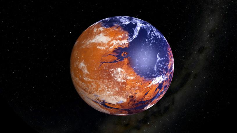 Kiedyś Mars tętnił życiem /materiały prasowe