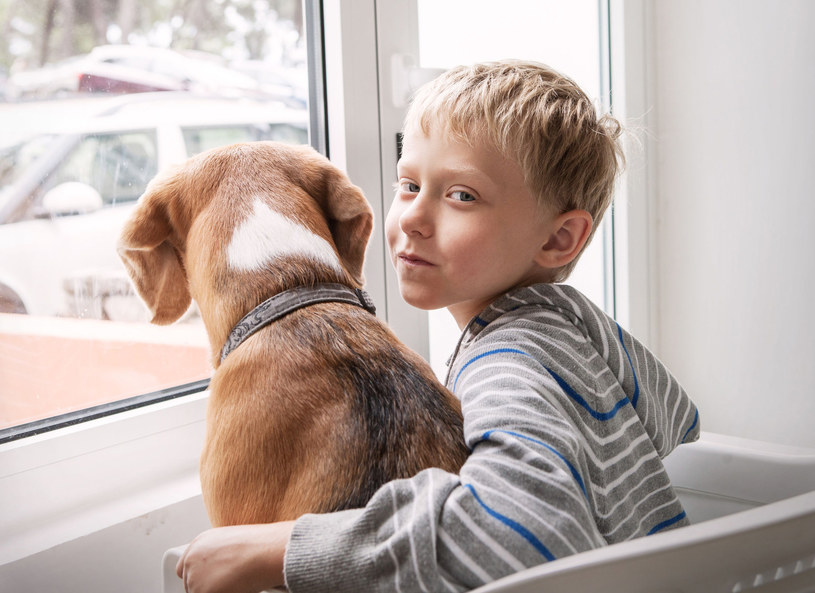 Kiedyś pies był jego ulubieńcem... /123RF/PICSEL