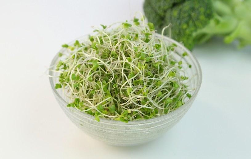Kiełki brokułów /© Photogenica