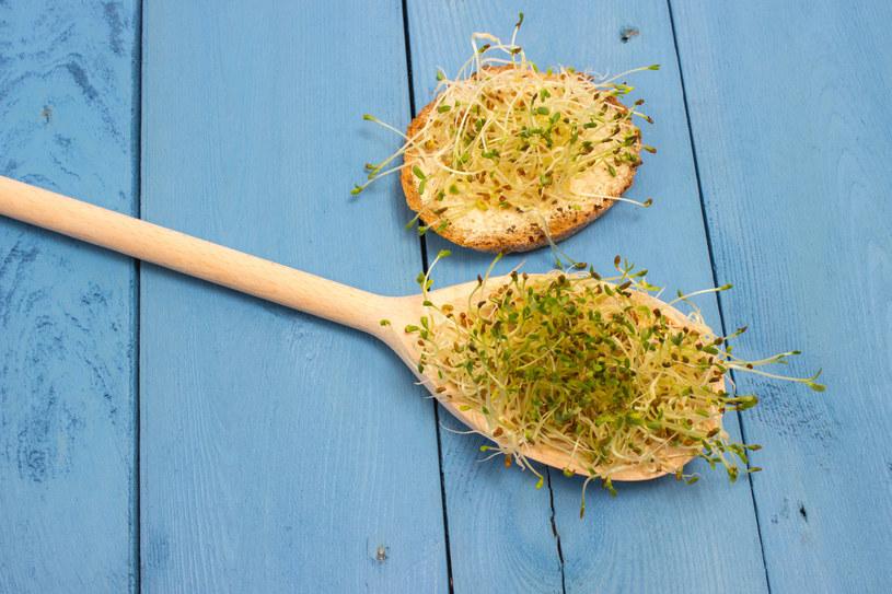 Kiełki lucerny skutecznie odżywią zmęczone włosy /123RF/PICSEL