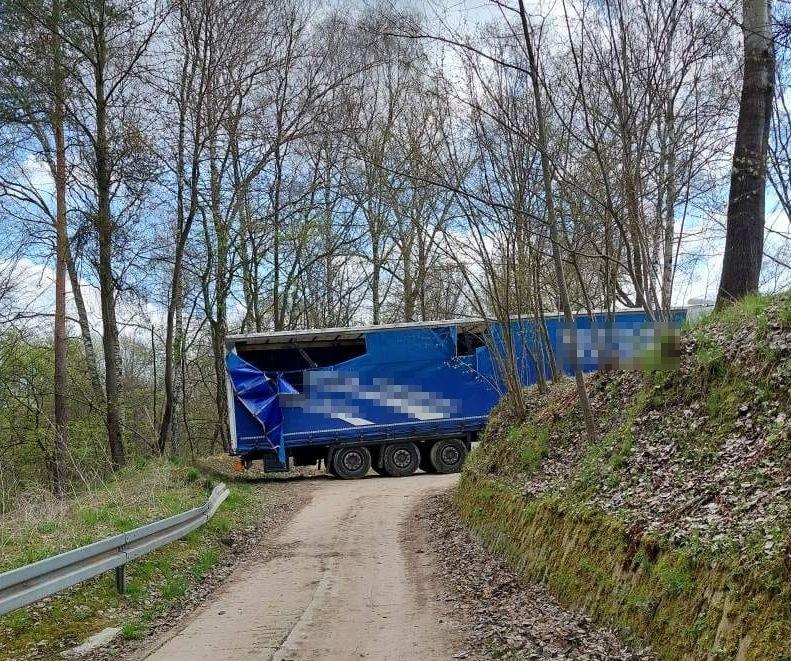 Kierowca spędził noc w lesie /KPP Puławy /Policja
