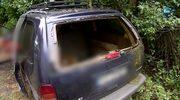 Kierowca zginął po zderzeniu z danielem. Zwierzę wskoczyło do samochodu przez szybę