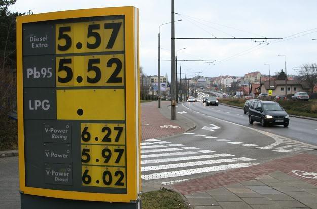 Kierowcy zaprotestują przeciwko wysokim cenom paliw, fot. Piotr Gocal /Agencja FORUM