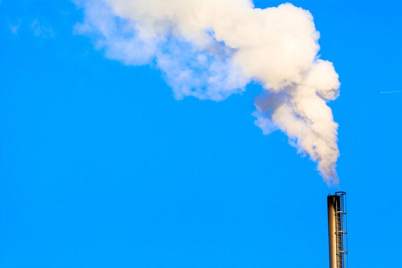 Kilka firm energetycznych w Polsce zaczyna walczyć o przetrwanie /123RF/PICSEL