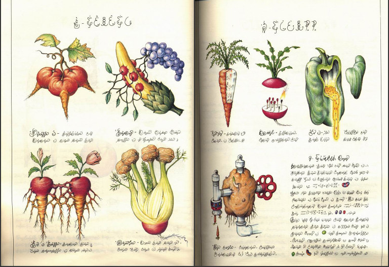 Kilka ilustracji ze stron Codexu /materiały prasowe