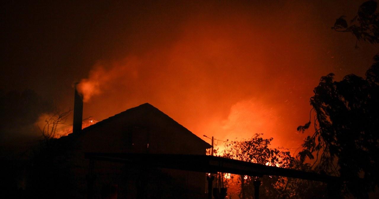 Kilkadziesiąt ofiar pożarów lasów w Portugalii