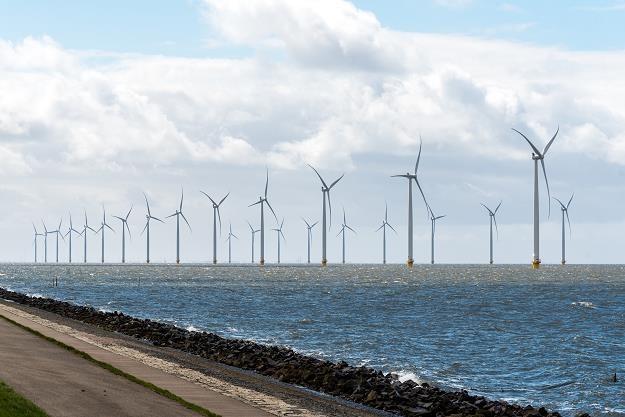 Kilkanaście największych światowych firm chce budować z PGE wiatraki na Bałtyku /©123RF/PICSEL