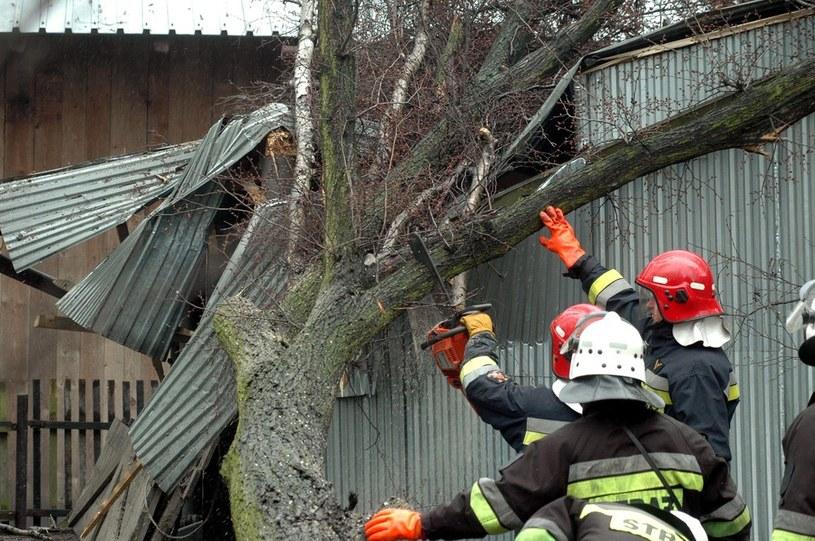 Kilkaset interwencji strażaków w Polsce północno-zachodniej /Marek Lasyk  /Reporter