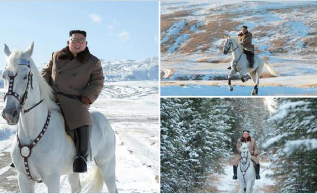 Kim Dzong Un na... białym koniu