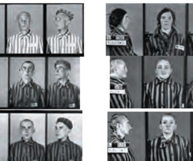 KL Auschwitz w obiektywie Wilhelma Brasse
